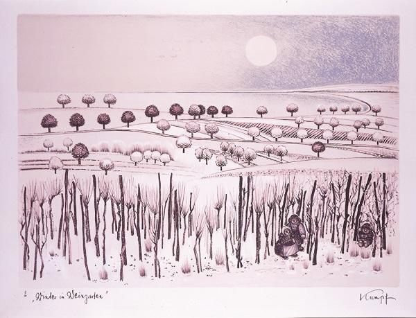 Kumpf Winter im Weingarten
